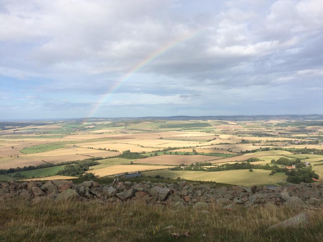 wooler rainbow